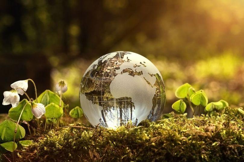 Globe terrestre - Nature