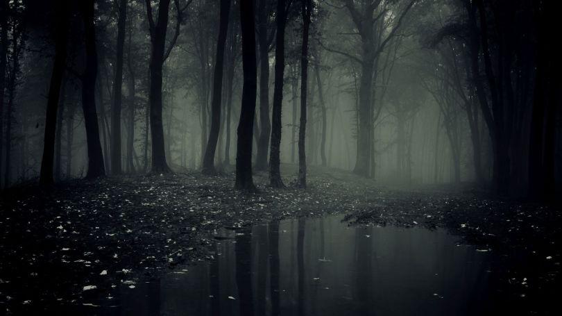 Forêt terrifiante
