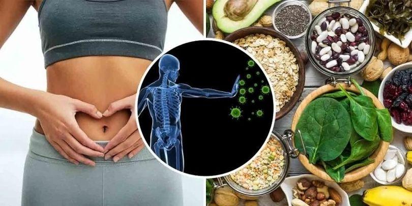 Système immunitaire - Alimentation