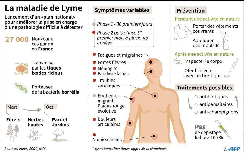 Maladie de Lyme - 2