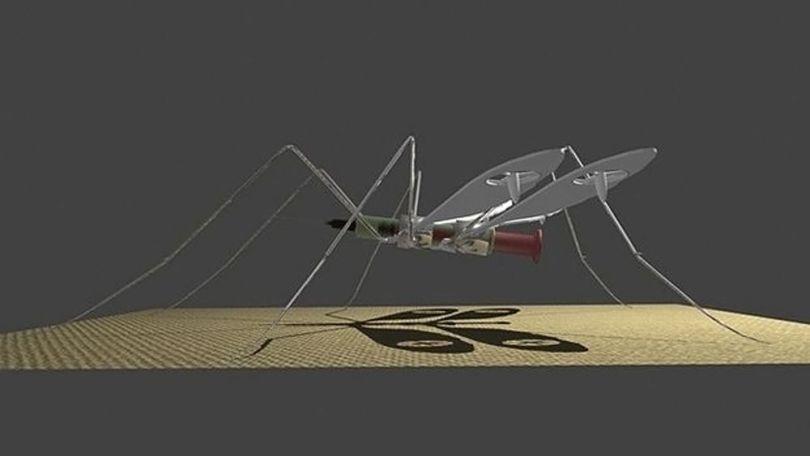 Moustique - 2