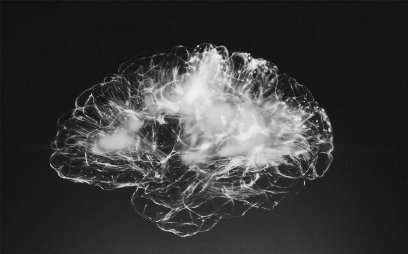Cerveau - Brain - 1