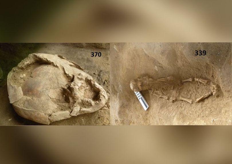 Crâne – Archéologie - 1