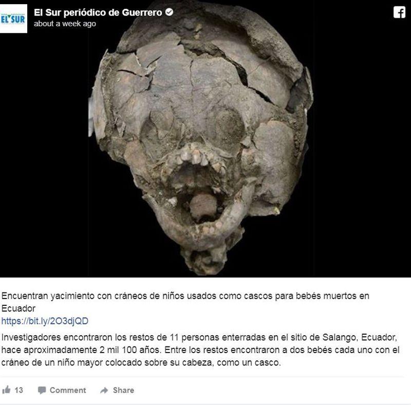 Crâne – Archéologie - 3