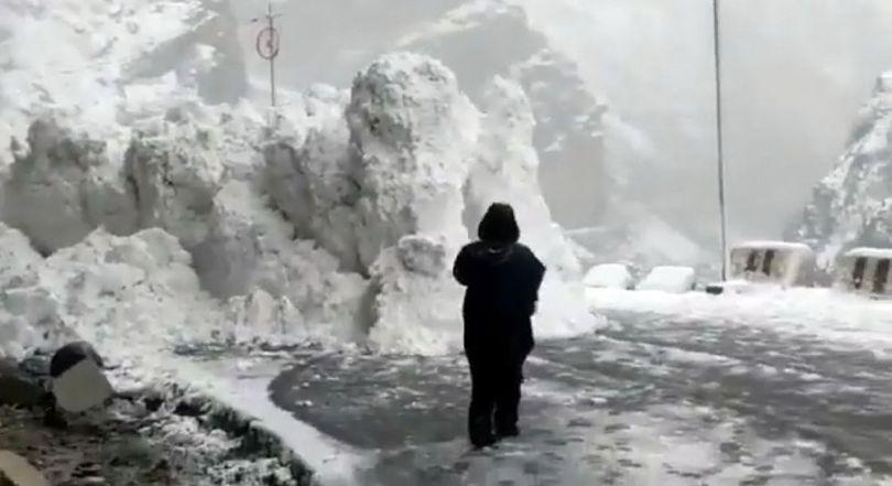 Avalanche - 1