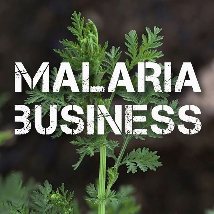 Malaria Business - 1
