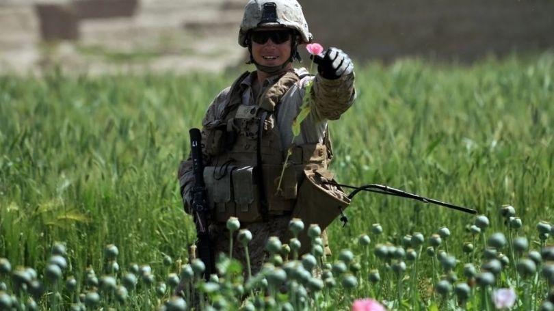 Soldat US - Pavot