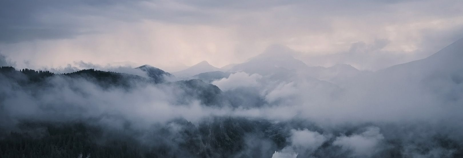 Spectres dans la brume [Vidéos]