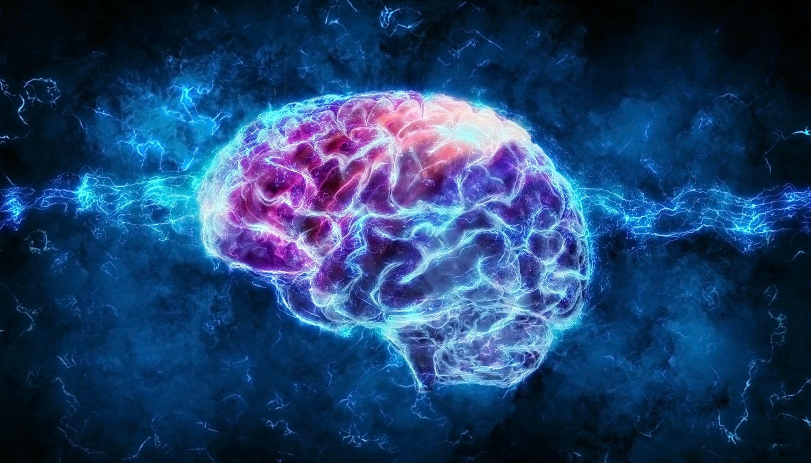 Des neuroscientifiques ont découvert un nouveau type de signal dans le cerveau humain [Vidéo]