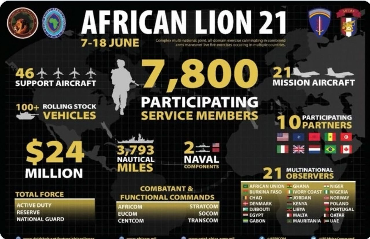 African Lion 21 - 3